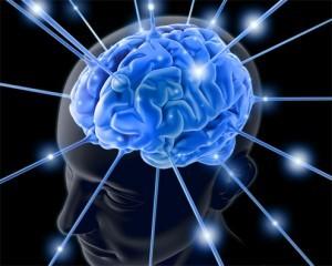 58924820_Brain001