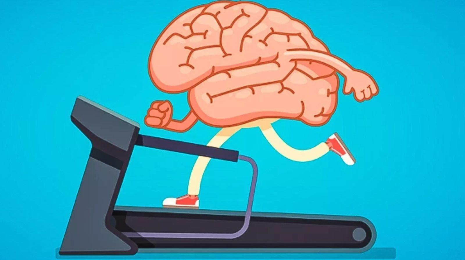 Прокачай свой мозг: как улучшить работу мозга