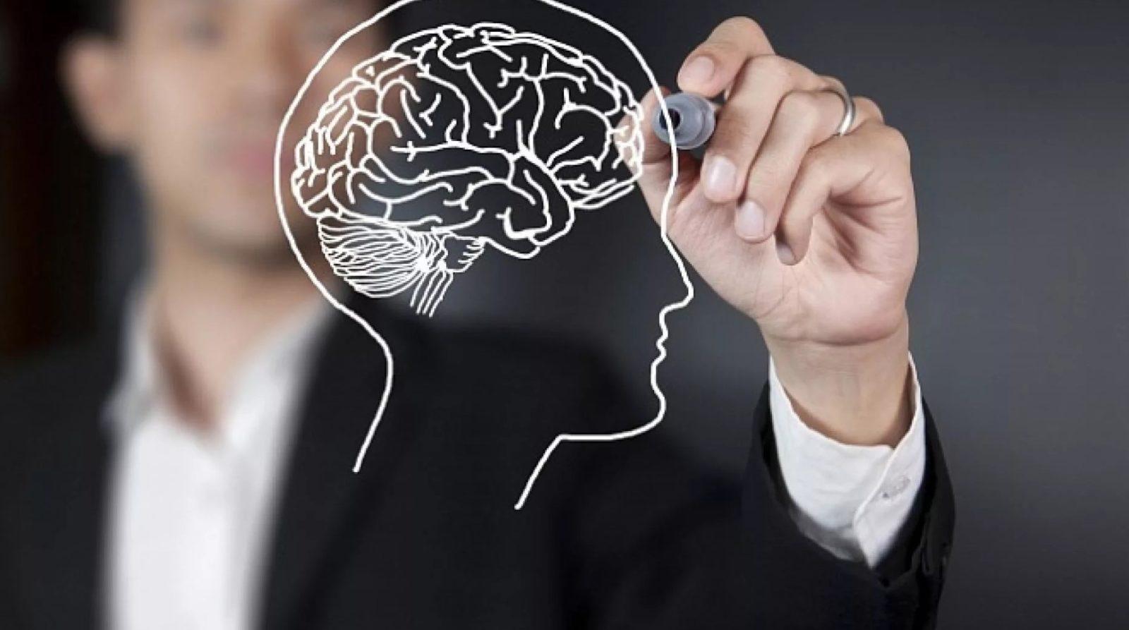 Признаки деградации мозга и способы её предотвратить?